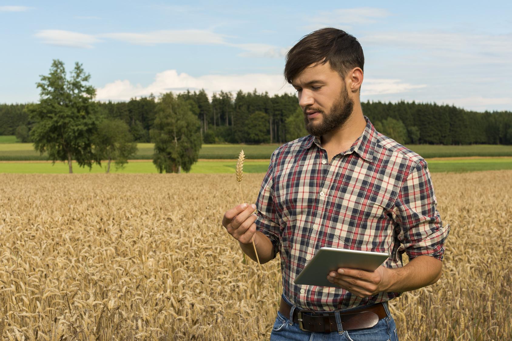 Talice traçabilité produits agroalimentaires
